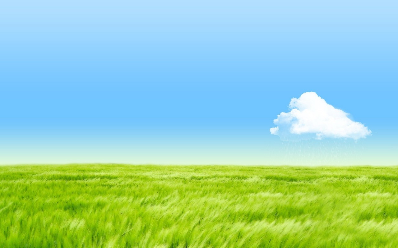 Grass Sky Wallpaper Page 1