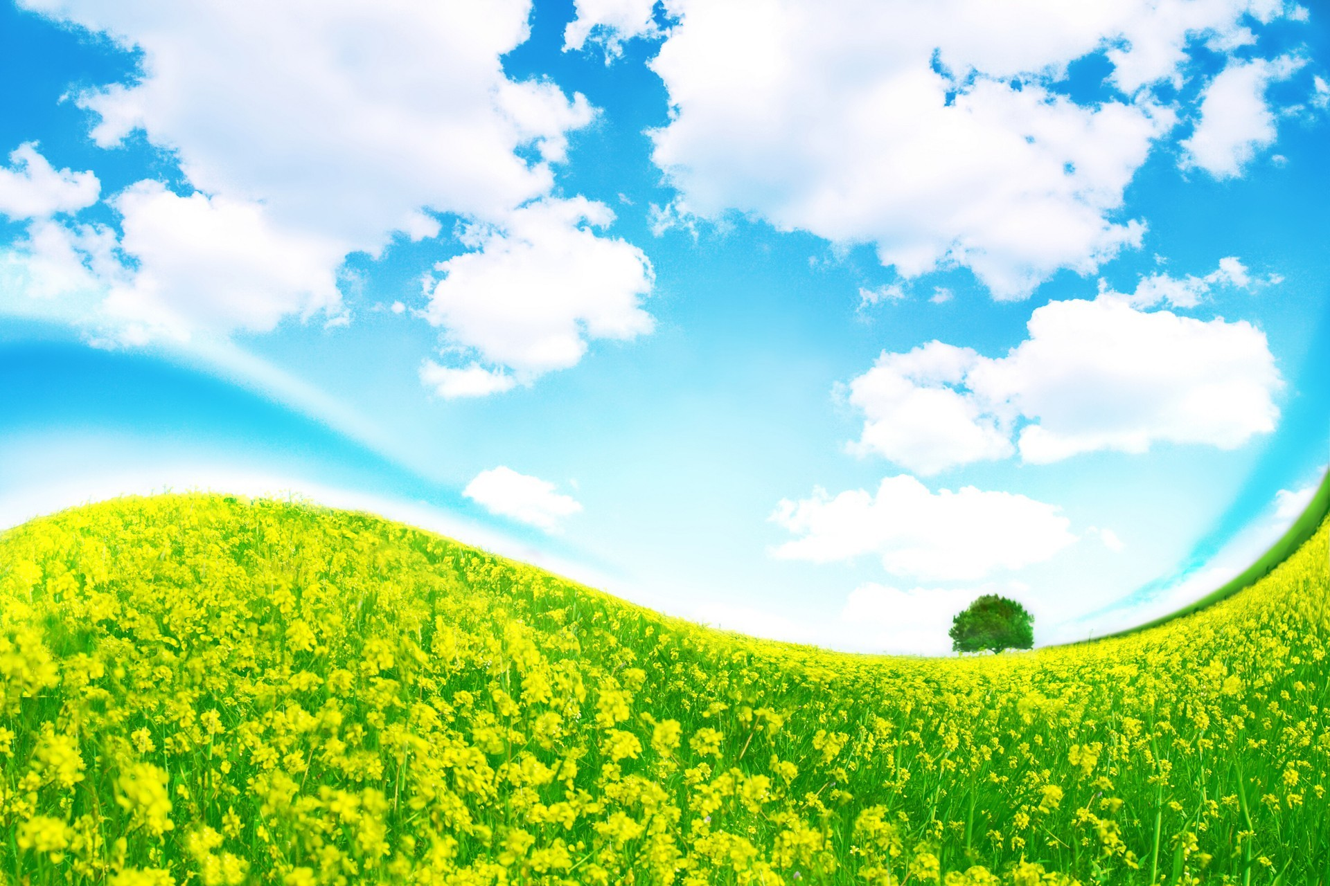 grass sky wallpaper - sf wallpaper