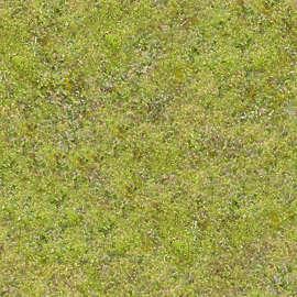 Grass texture - SF Wallpaper