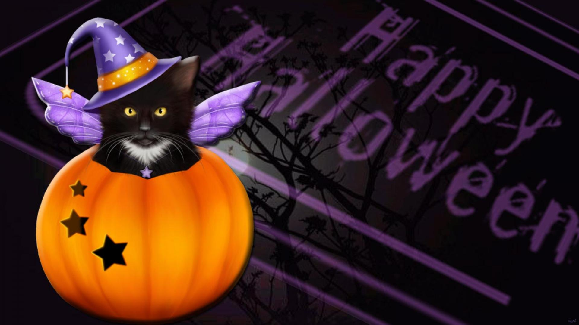 Halloween Cat Wallpaper - WallpaperSafari