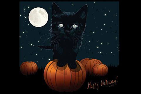 Desktop Wallpaper for a Chilling Cat Halloween | Pictures of Cats