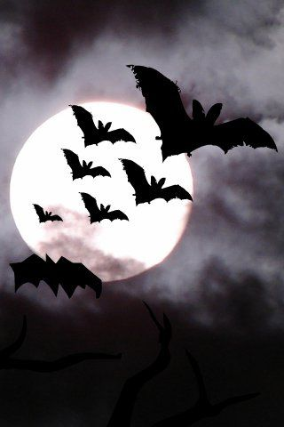 halloween phone backgrounds #1