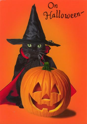 1000+ images about Quotes3!!!! on Pinterest   Happy halloween