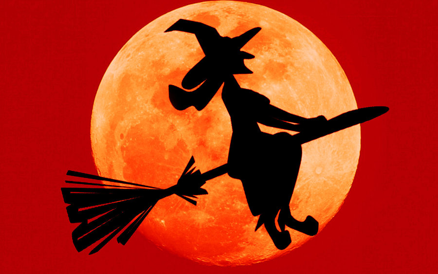 Halloween Witches Wallpaper - WallpaperSafari