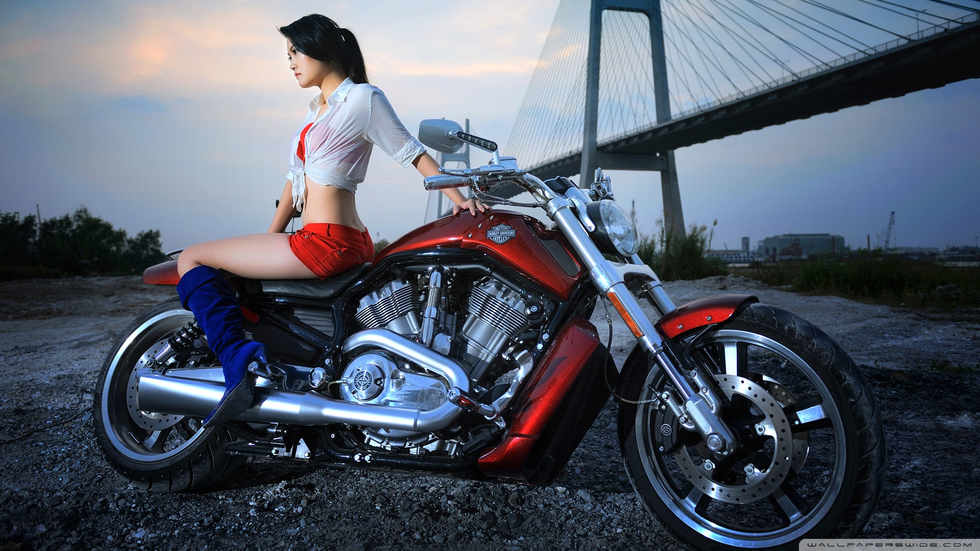 Harley Girls Wallpaper - WallpaperSafari