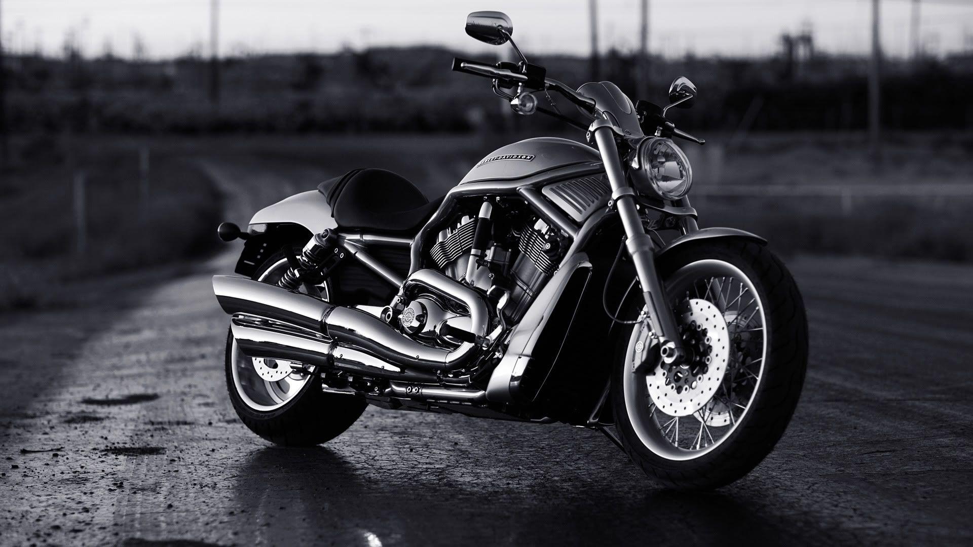 Harley Davidson V Rod Muscle Wallpapers - Wallpaper Cave