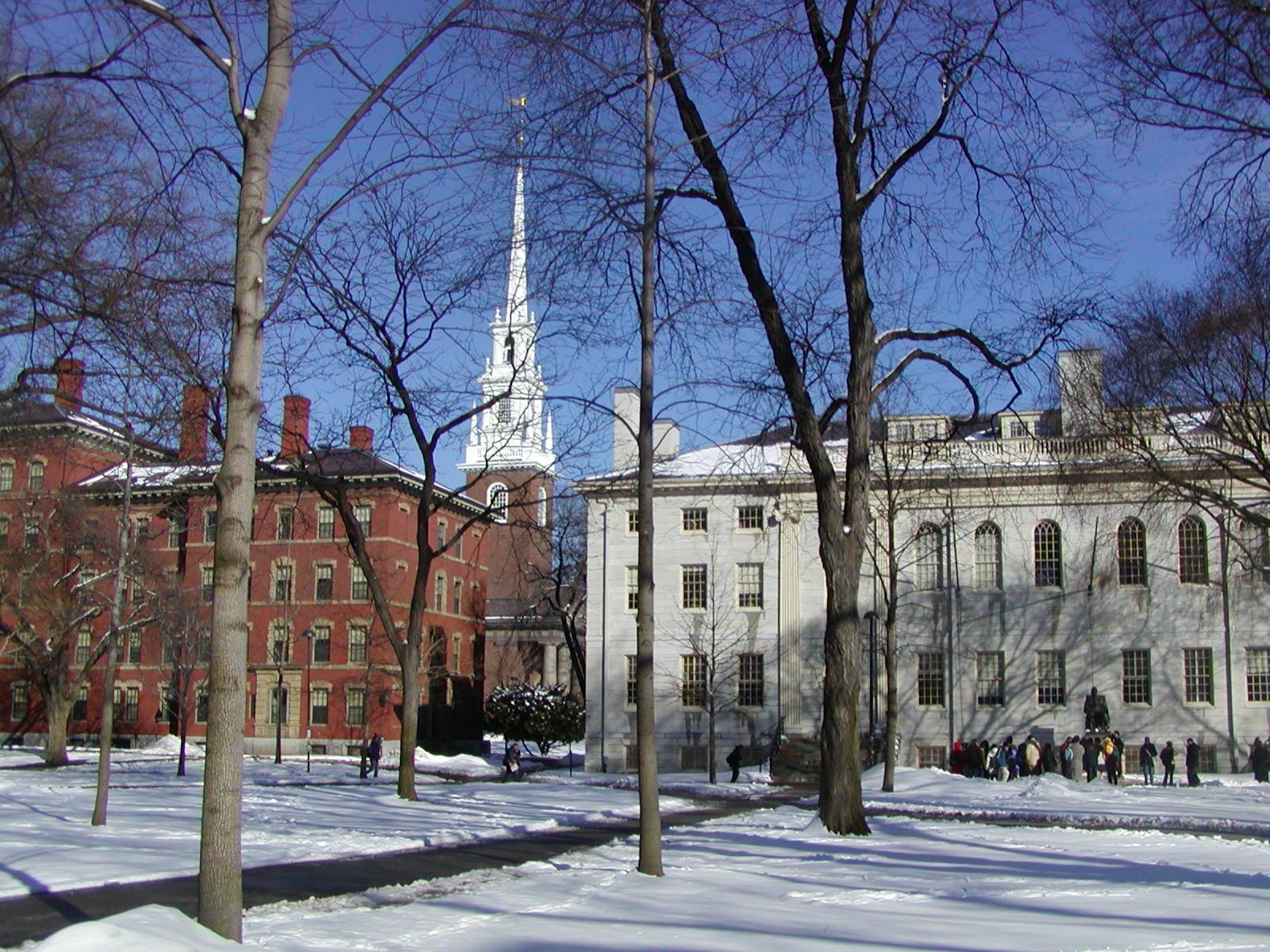 Harvard | Harvard University d'Hélène | Pinterest | Beautiful, Kid