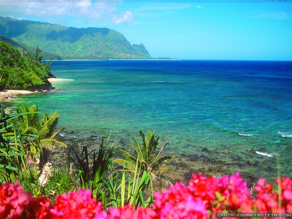 Hawaiian Wallpapers - Wallpaper Cave