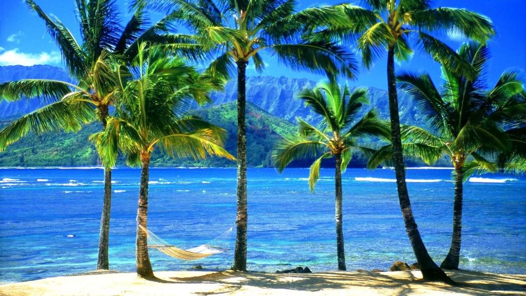 Collection of Hawaiian Beach Wallpaper on HDWallpapers