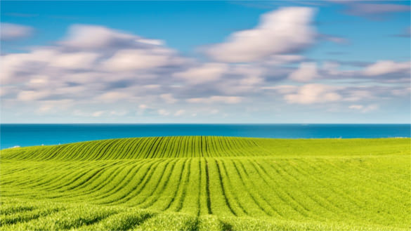 hd background free download #23