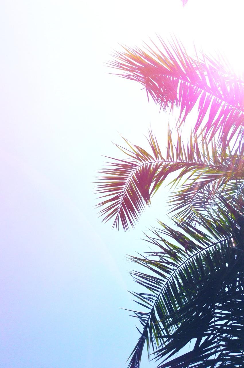 1000+ ideas about Wallpaperhd on Pinterest | Iphone wallpaper hd