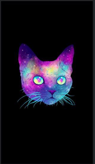 Cat iPhone wallpaper tumblr -