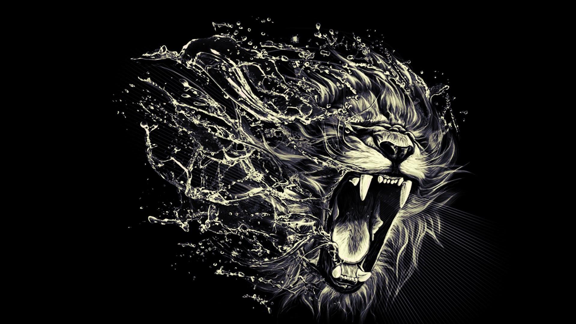 Lion Wallpaper – High Quality HD Quality Photos | HD Quality 1080P