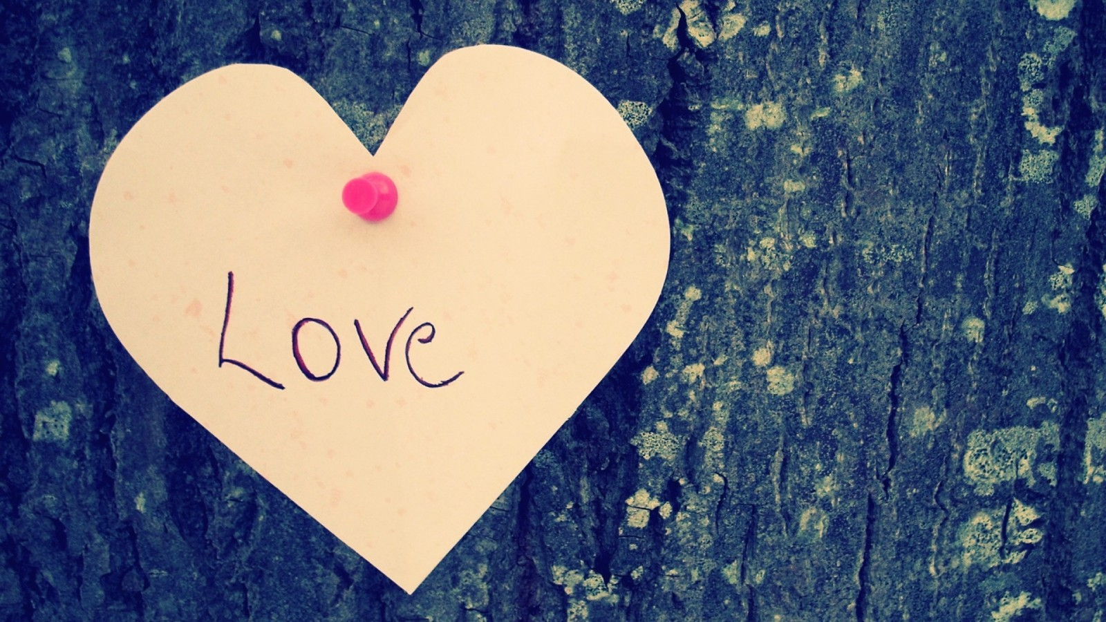46 Love HD Images for Free (2MTX Love HD Wallpapers)