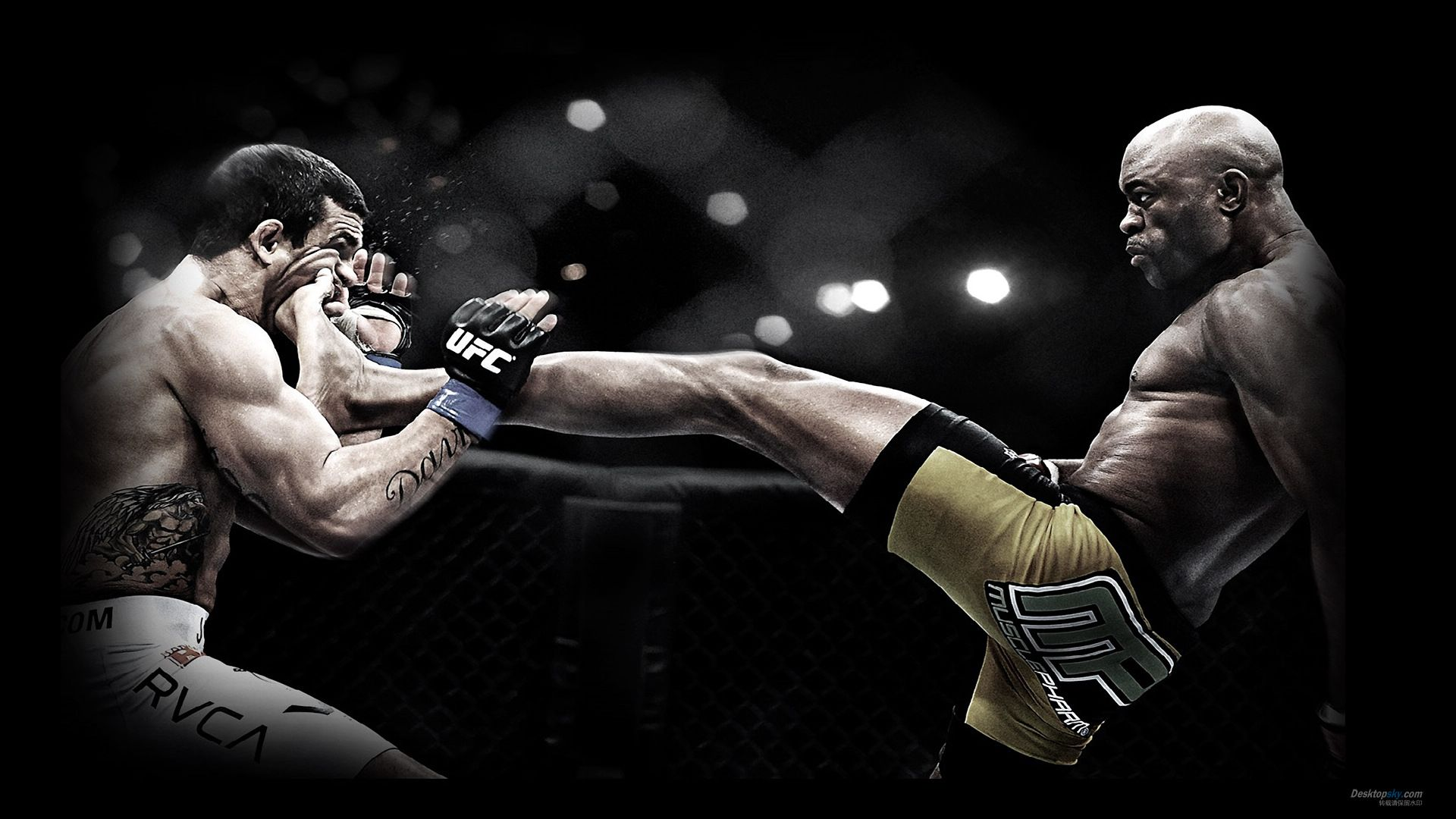 Mixed Martial Arts Wallpapers High Quality