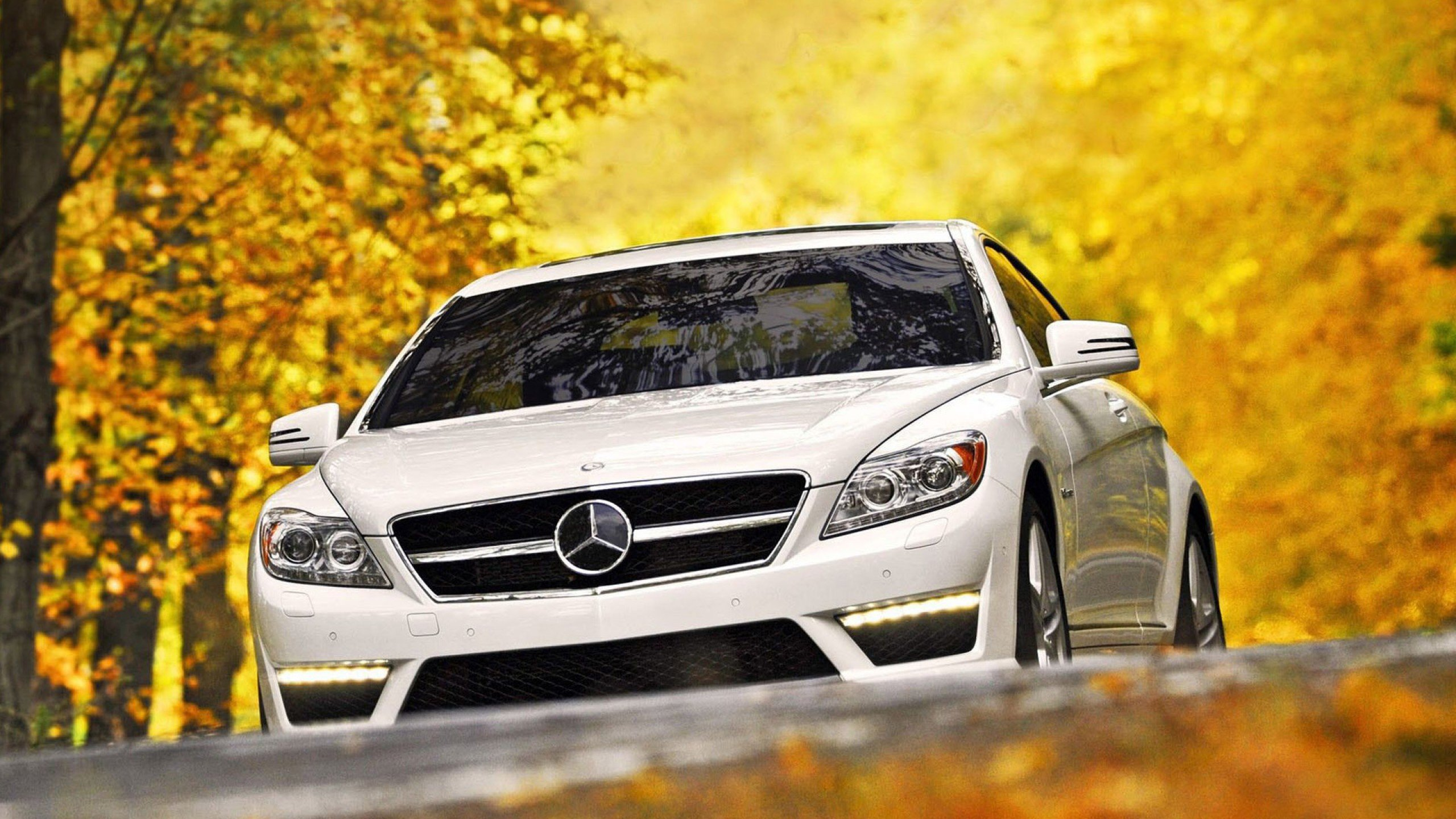 Cool White Mercedes Benz Wallpaper Picture - Likegrass com