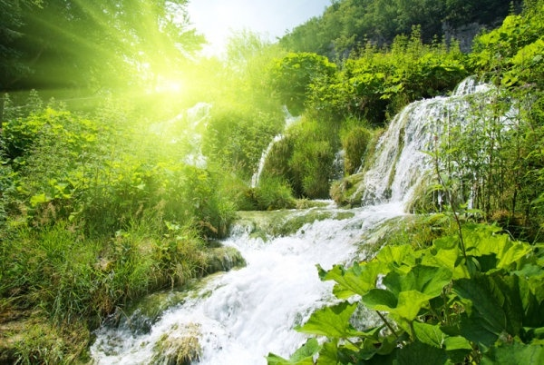 Hd nature free stock photos download (21,717 Free stock photos