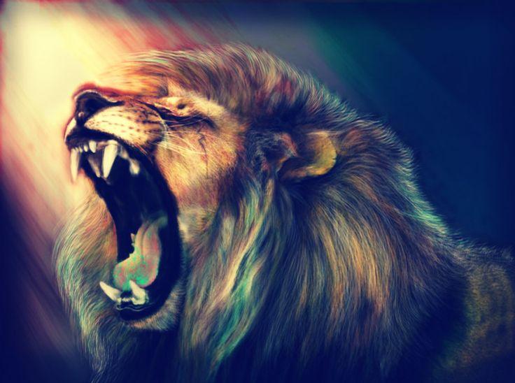 78 Best ideas about Lion Hd Wallpaper on Pinterest | Lion, Roaring