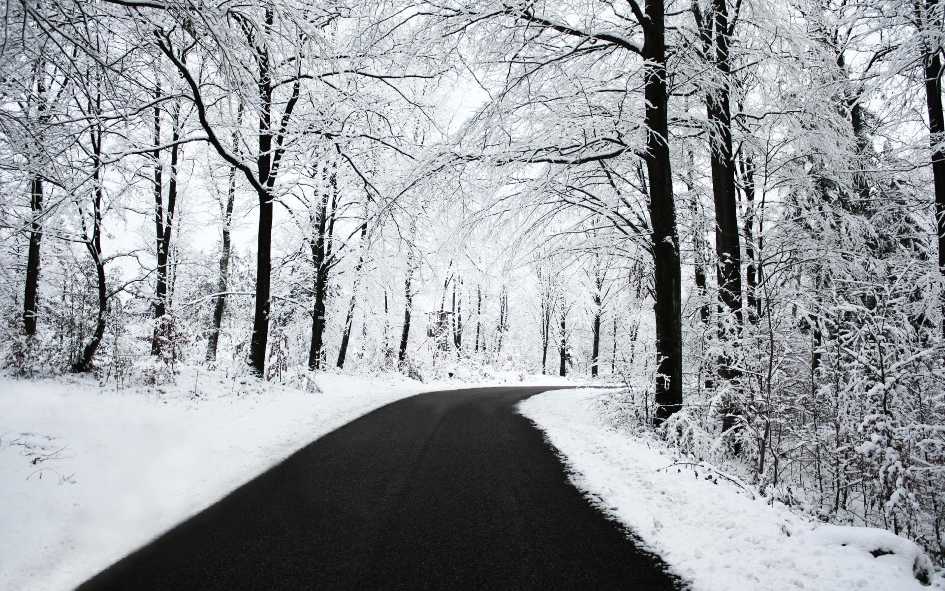 Winter Widescreen Wallpaper Sf Wallpaper