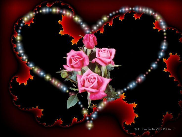 30 Hearts And Roses Backgrounds HQ Mirembe Dockwra
