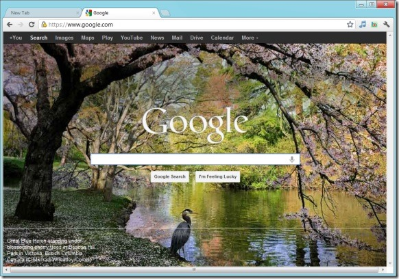 Set Bing Homepage Wallpaper As Google Background