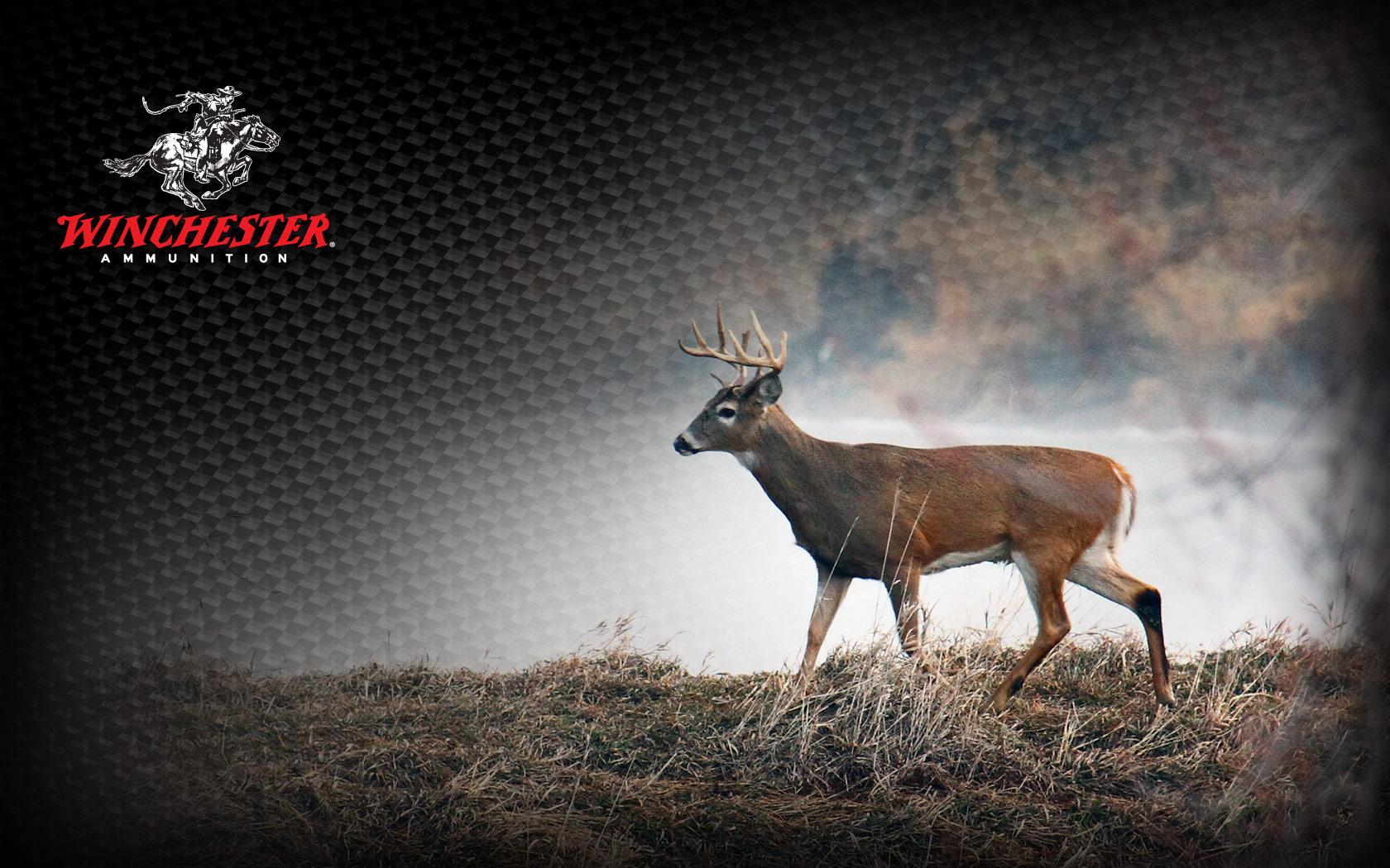 Hunting Wallpaper HD - WallpaperSafari