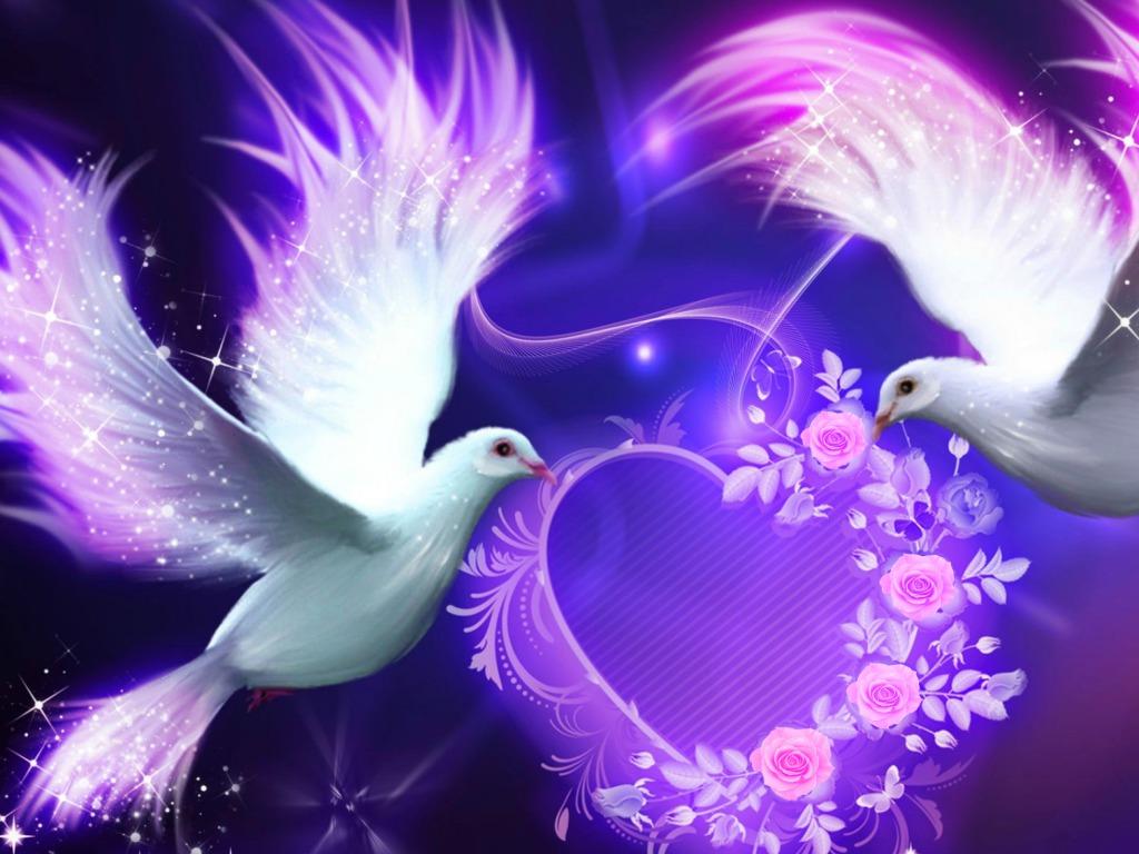 Love Birds Wallpaper Wallpapers Free Download