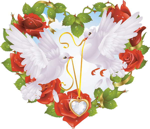 Images Of Love Birds Sf Wallpaper