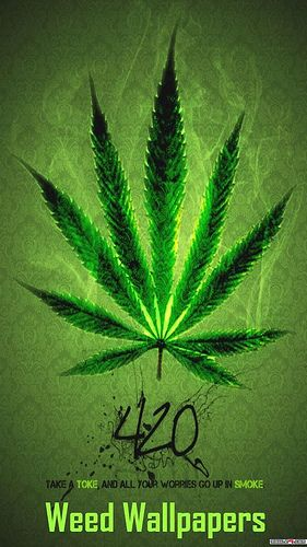 1000 Ideas About Weed Wallpaper On Pinterest