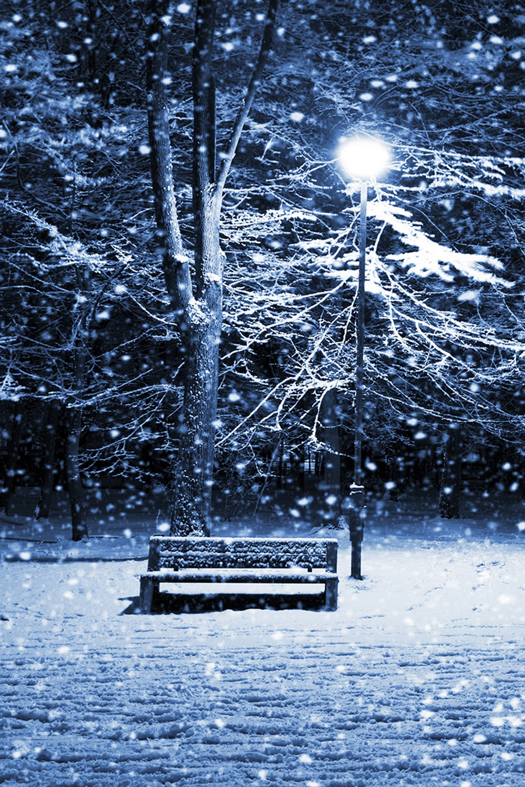 Winter iPhone Wallpapers HD Group (84+)