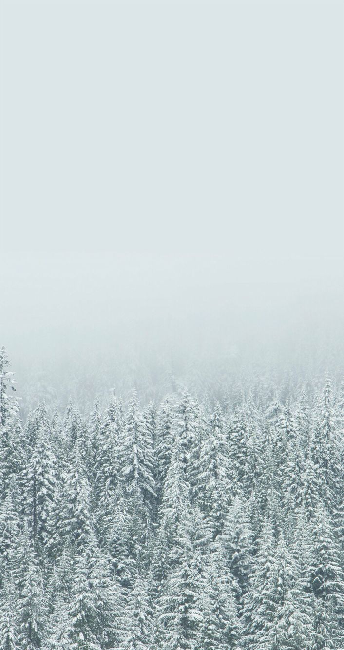 Iphone wallpaper winter - SF Wallpaper