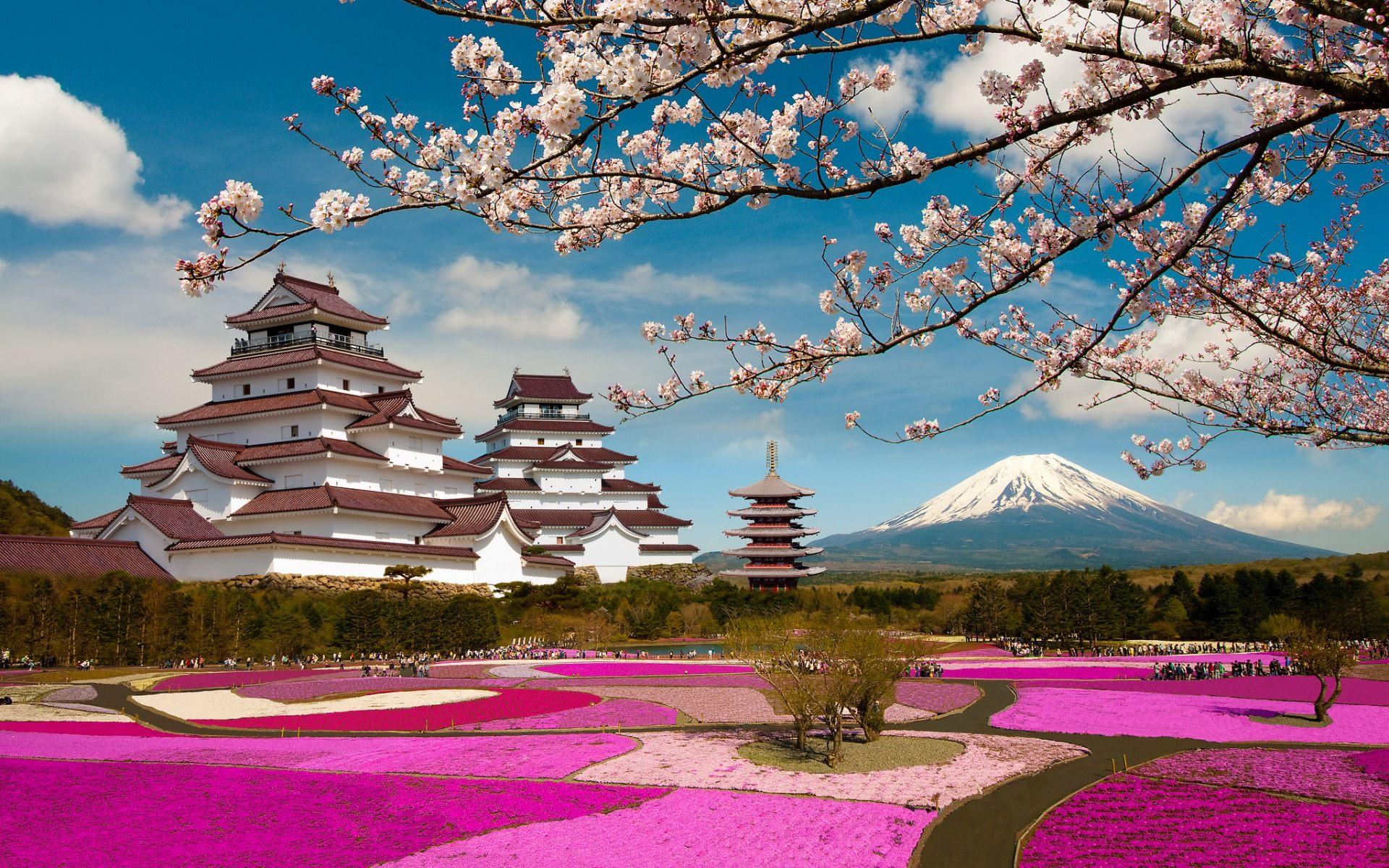 Mt Fuji Japan Scenery Wallpaper HD Download For Desktop