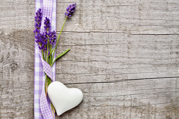 Lavender Wallpapers For Android IPhone And IPad