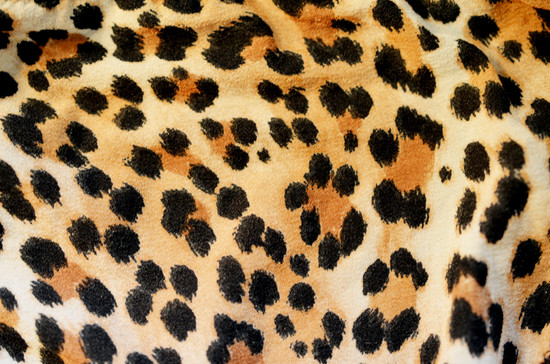 Leopard print | Android Central