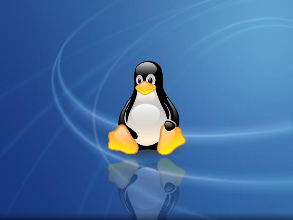 Linux penguin wallpaper - SF Wallpaper