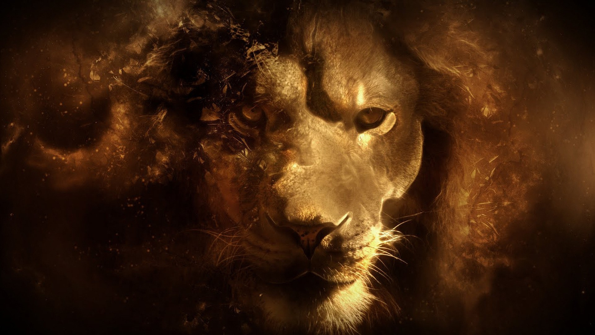 lion, Fantasy Art Wallpapers HD / Desktop and Mobile Backgrounds