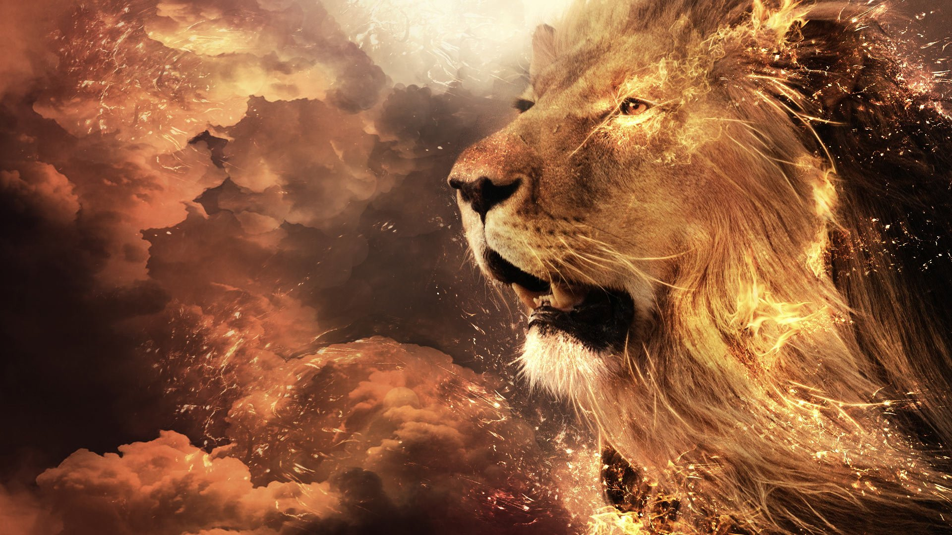 406 Lion HD Wallpapers | Backgrounds - Wallpaper Abyss