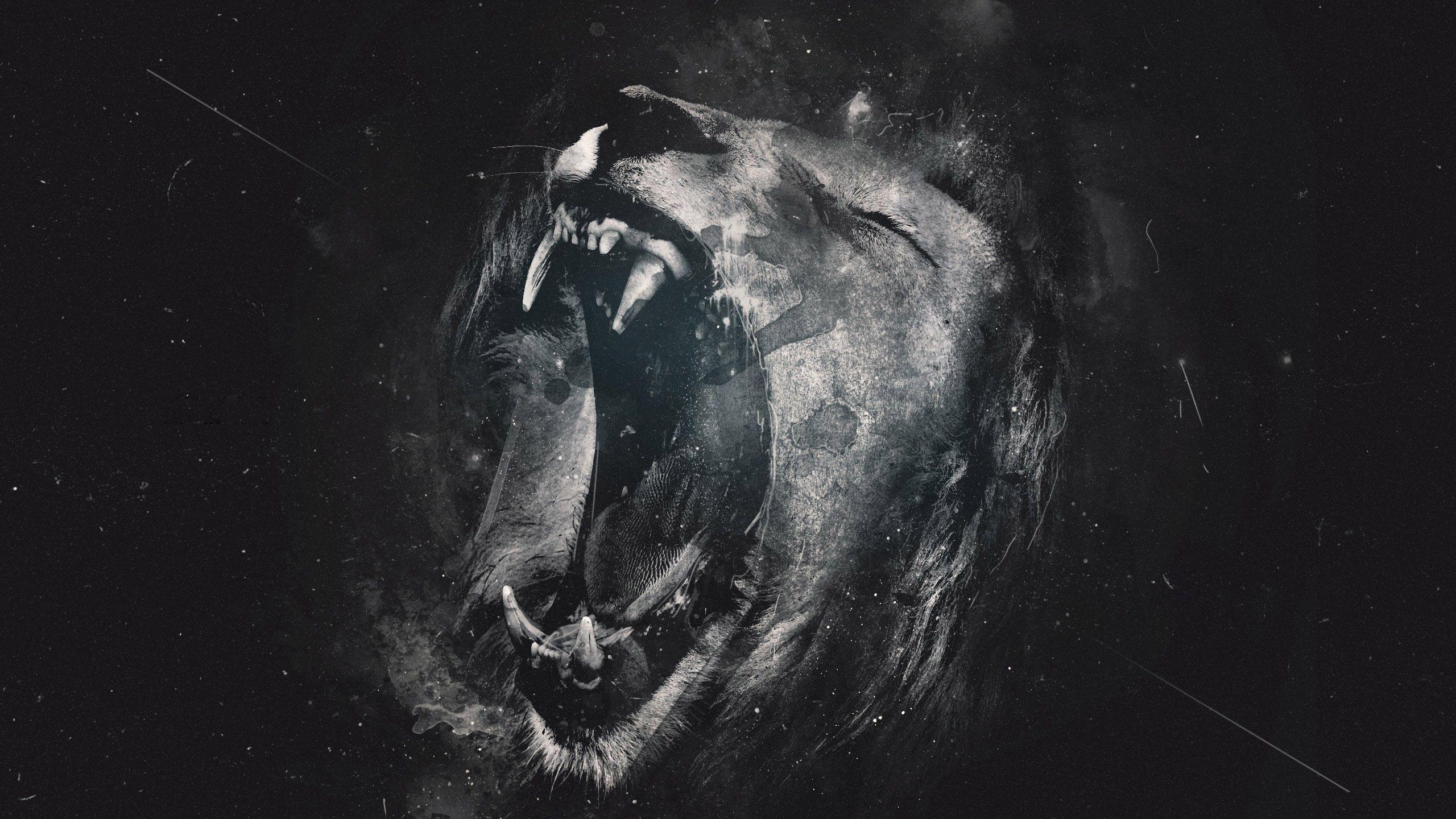 Lion Wallpaper - Best HD Wallpaper
