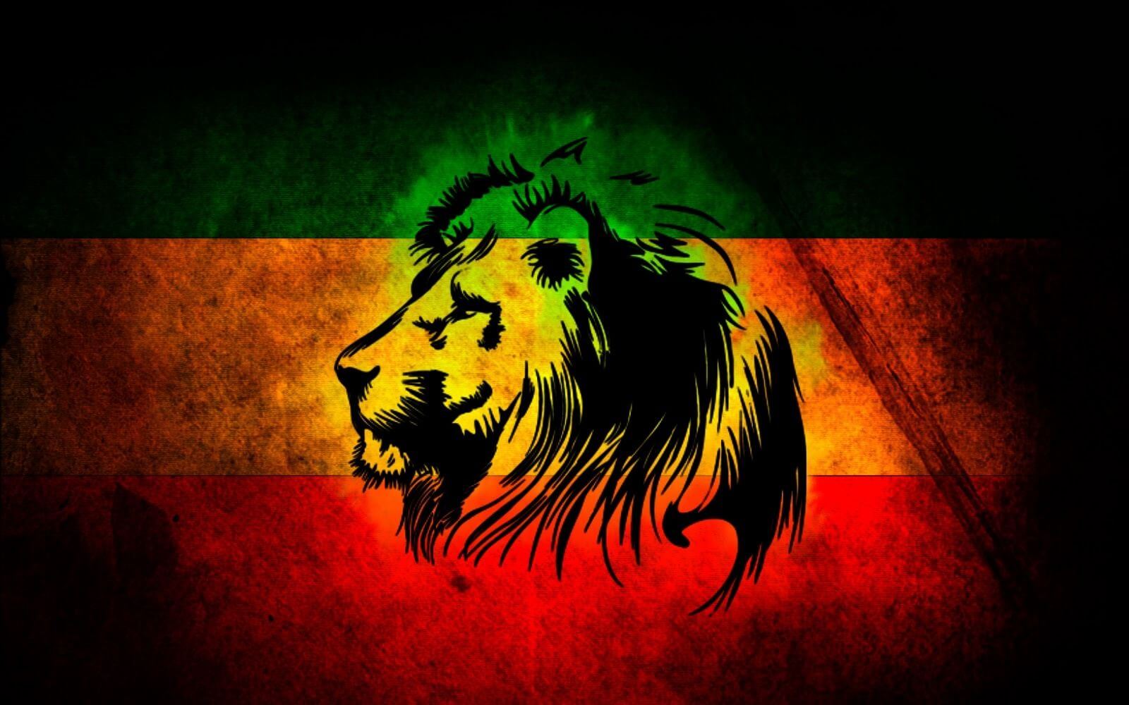 Collection of Lion Wallpaper Hd on HDWallpapers