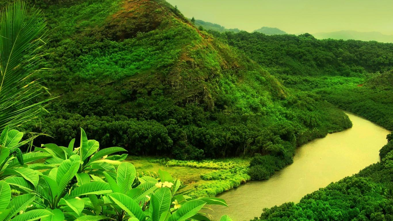 live nature wallpaper for pc - sf wallpaper