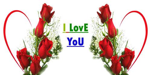 Love Flower Image, Love Flower Wallpapers KU - LL GL Wallpapers