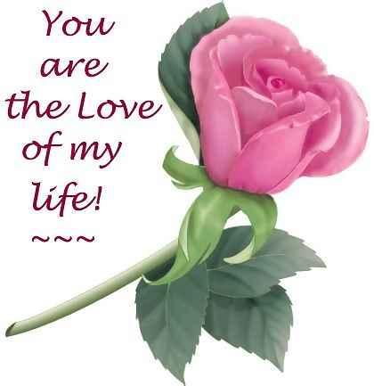 photo flower love love flower image pictures - Infodik net