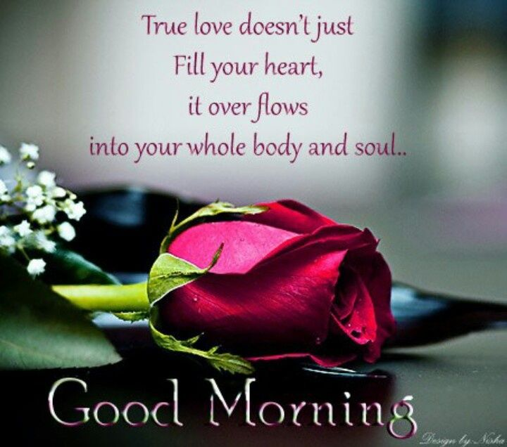 Good Morning True Love Pictures, Photos, And Images For Facebook