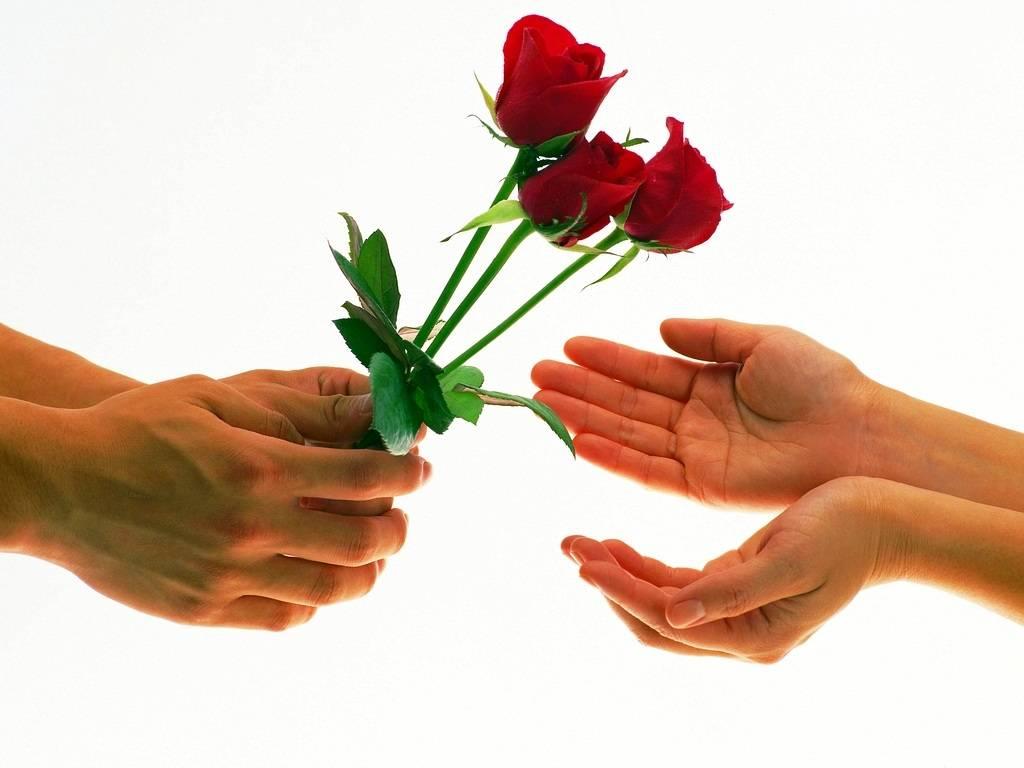 Love rose images sf wallpaper love red rose flower izmirmasajfo