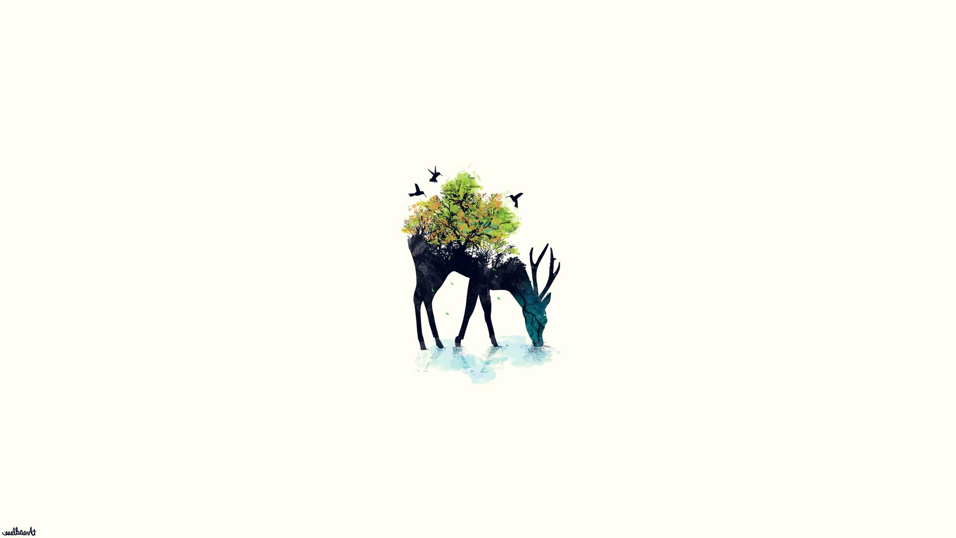 Minimalist Nature Wallpaper
