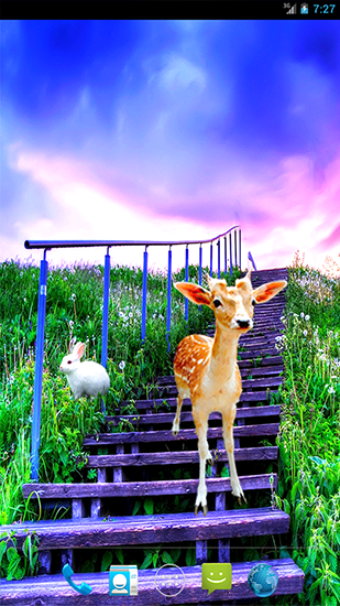 Grassland live wallpaper for Android  Grassland free download for