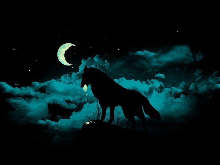 1000 Ideas About Wolf Wallpaper On Pinterest