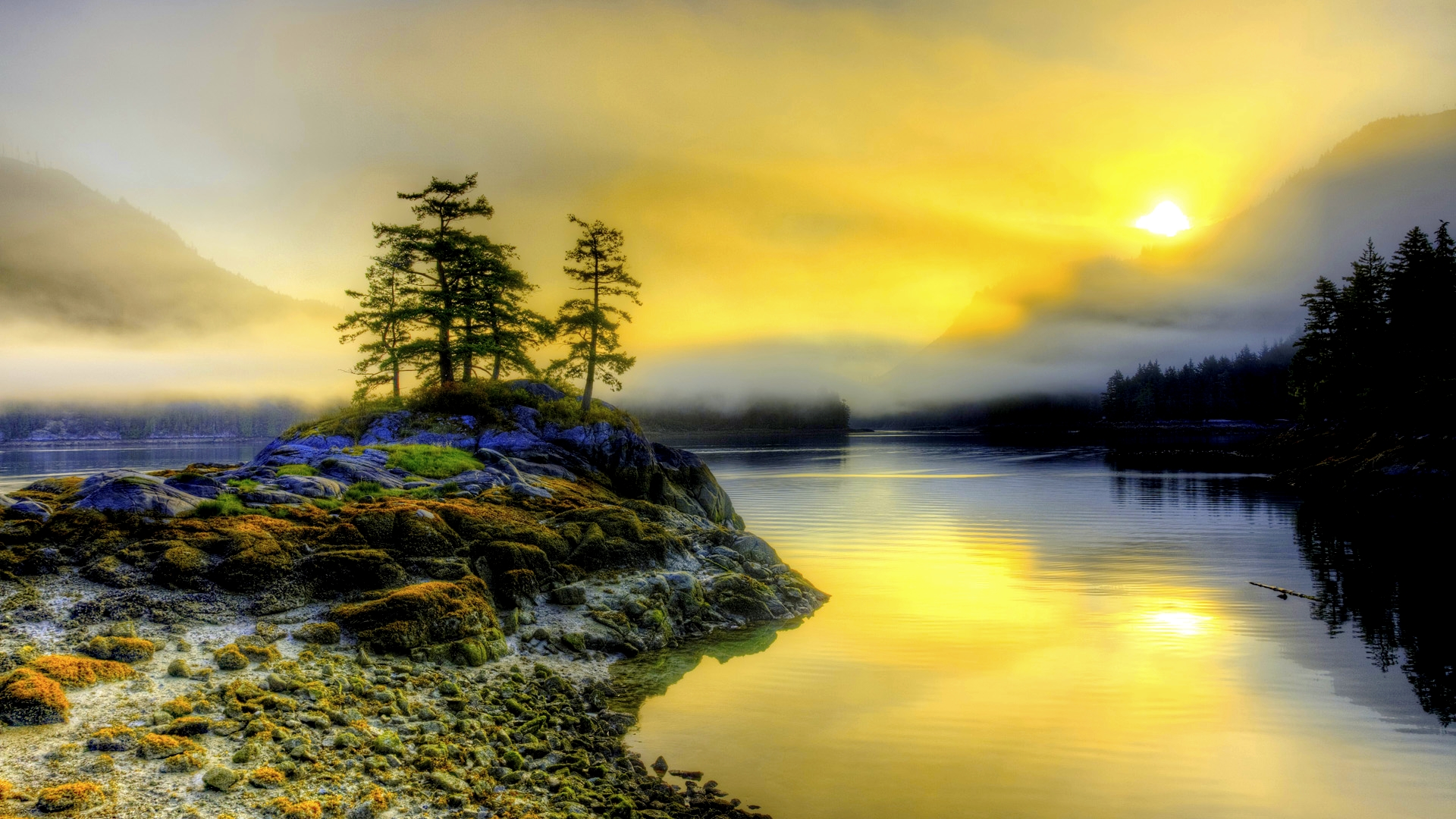 Morning Wallpaper 7426 1920 x 1200 - WallpaperLayer com