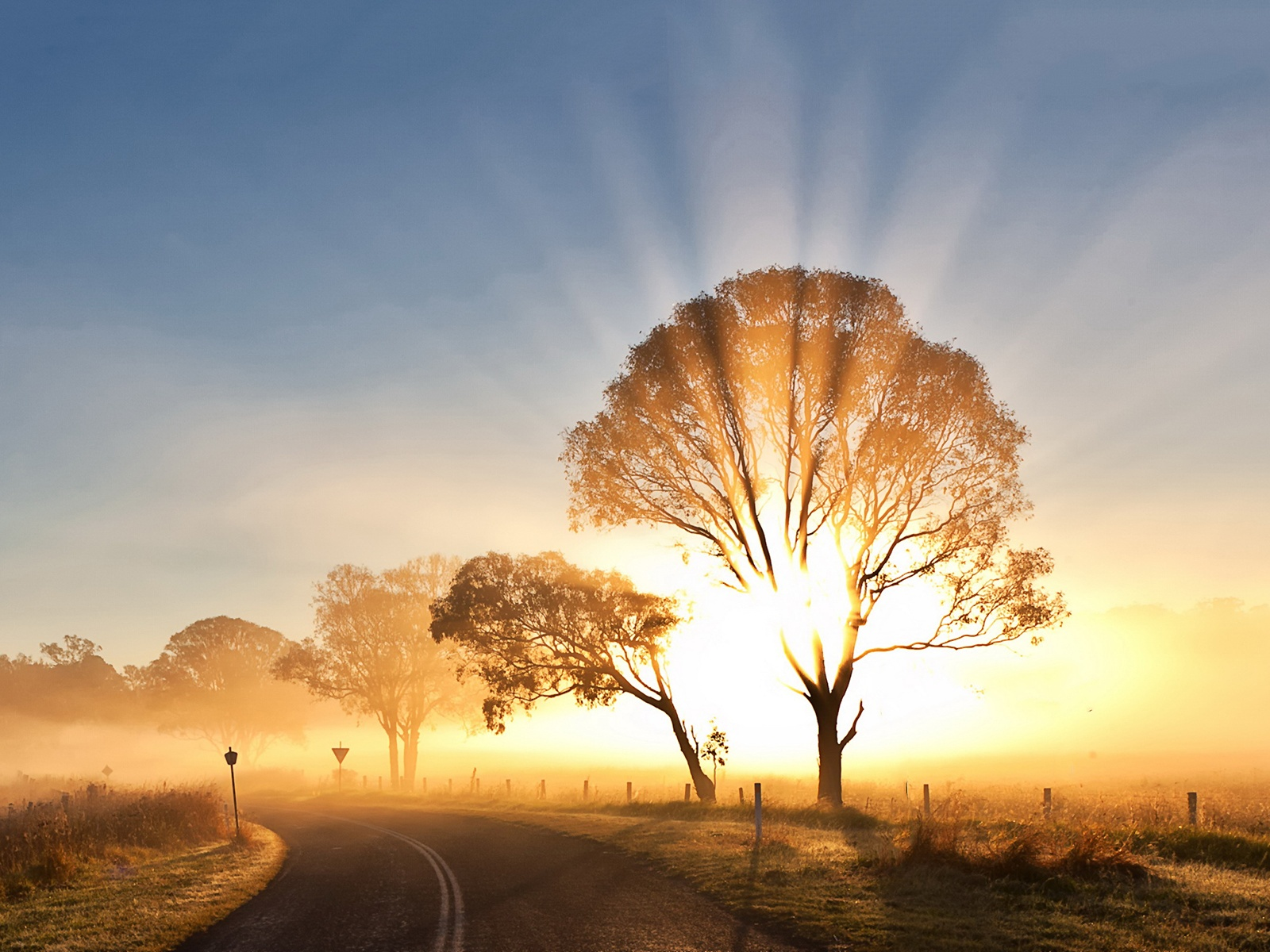 Amazing 46 Wallpapers of Morning Mist, Top Morning Mist Collection