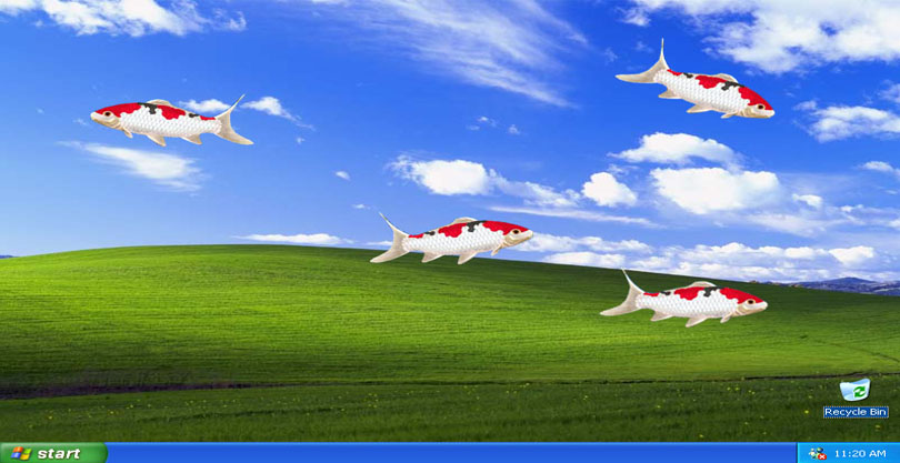Moving Animated Wallpapers Free Download